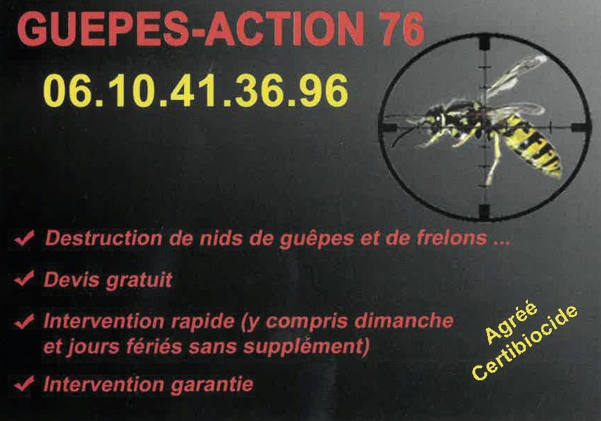 Guepes action 2